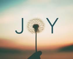 Joy Christian